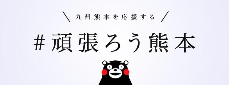 熊本県50%の建物が公費解体終了!『奇跡の1本石垣』も解体、積み直し決定!